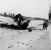 Wreckage of German Jet Aircraft near Autobahn, Germany April 1945