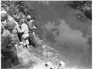 Men of C/263d Engr Bn survey completed bridge