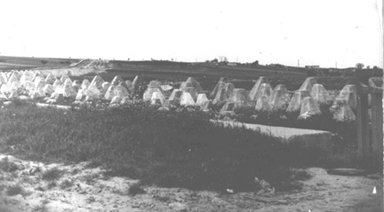 Dragons Teeth Siegfried line