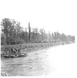 Pontoon bridge construction on Danube Apr 45